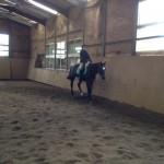 乗馬クラブの駈歩レッスン 茨城県水戸市 Aさん