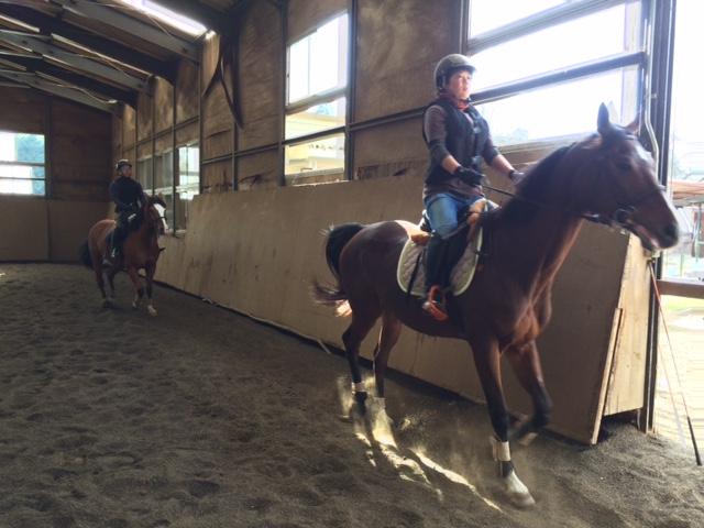 乗馬クラブの駈歩レッスン 茨城県水戸市 Kさん