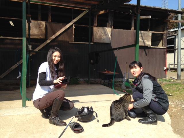 乗馬クラブのレッスン後のひと時 茨城県水戸市 Fさん
