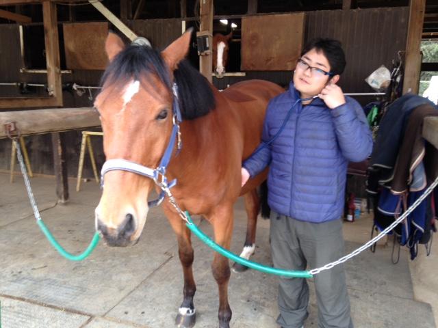 乗馬クラブで獣医の診察を見学しました。 茨城県つくば市 Sさん