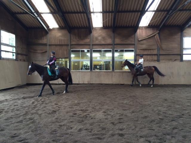 乗馬クラブで初心者レッスンに参加しました! 茨城県稲敷市 Tさん