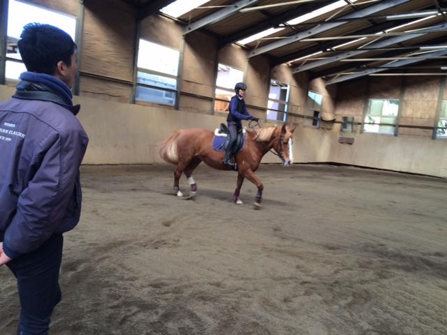 乗馬クラブで速歩誘導練習をしました 茨城県水戸市 Iさん