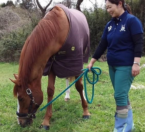 乗馬クラブでのんびり馬達と過ごしました。 茨城県龍ヶ崎市 Eさん