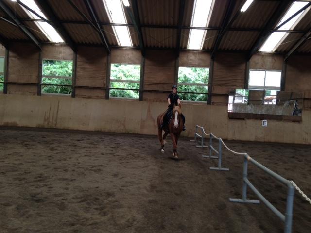 乗馬クラブで初心者レッスンを受講しました! 茨城県つくば市 Tさん