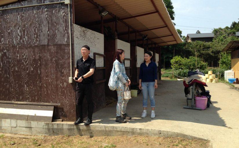 乗馬クラブでレッスン後、反省会をしました。 茨城県龍ヶ崎市 Mさん