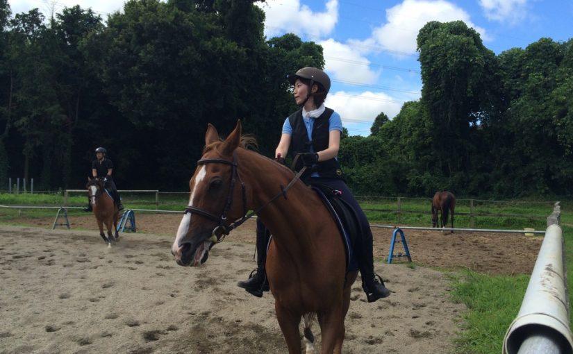 乗馬クラブで青空の下でレッスンを受講して来ました。 茨城県水戸市 Oさん