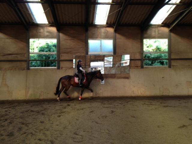 乗馬クラブで特別レッスンを受講しました。 茨城県牛久市 Uさん