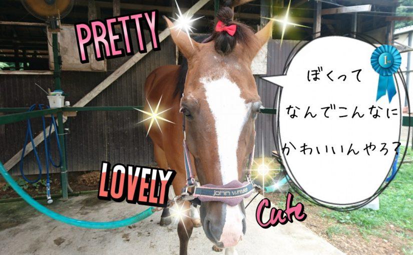乗馬クラブでビギナーレッスンをしました(茨城県土浦市/M様)