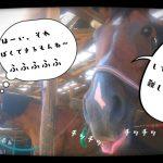 乗馬クラブでアドバンスレッスンをしました(茨城県土浦市/K様)
