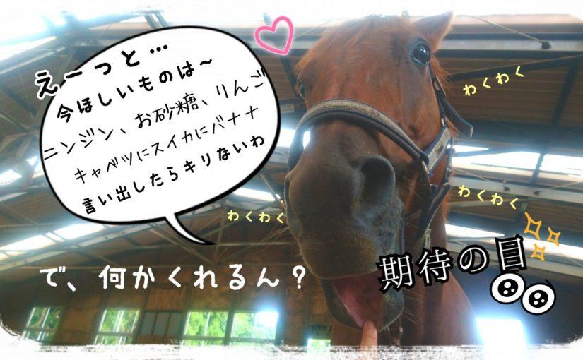 ちゃんちゃか駈歩!! (茨城県つくば市/U様)