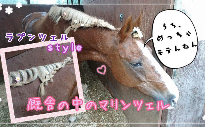 アットホームな乗馬クラブでワイワイ(*´ω`)