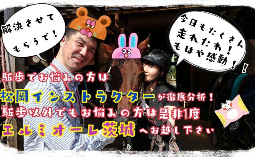 馬房掃除講習会(茨城県稲敷市/S様)