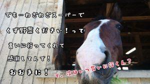 16-11-03-18-45-03-964_deco