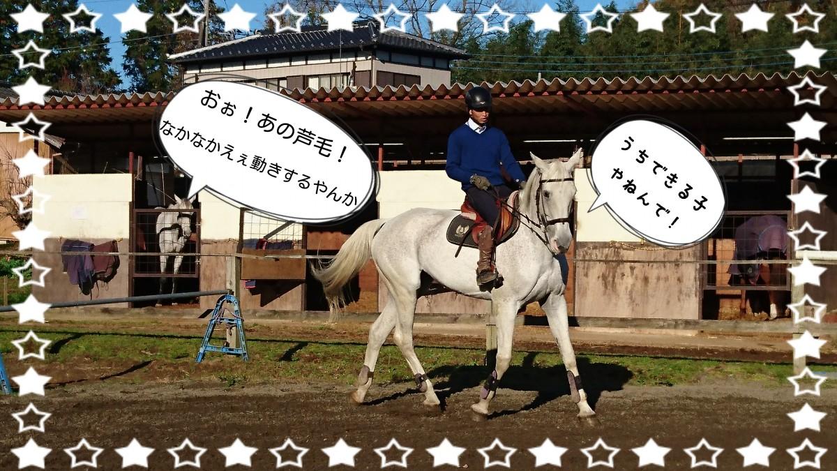 16-12-03-20-23-23-319_deco