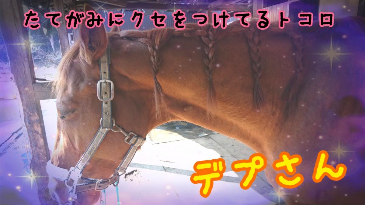 17-01-30-17-36-55-751_deco