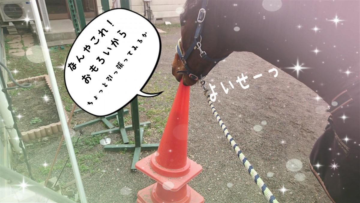 17-03-09-20-29-11-028_deco