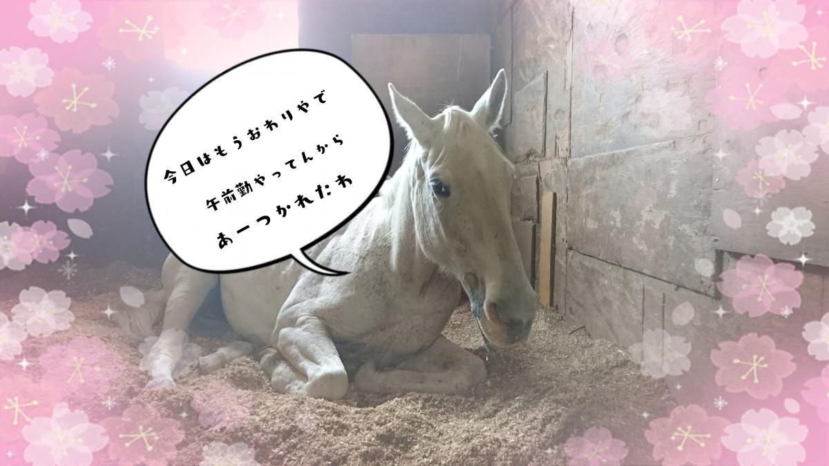 17-04-03-22-15-10-275_deco