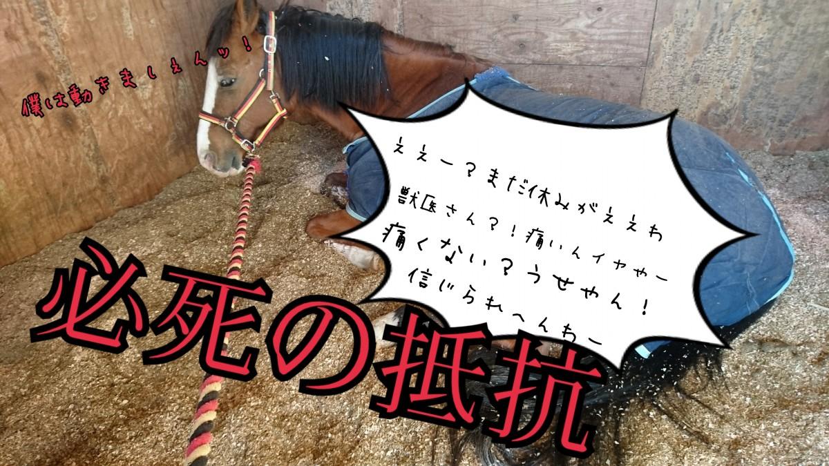 18-01-04-21-25-24-617_deco