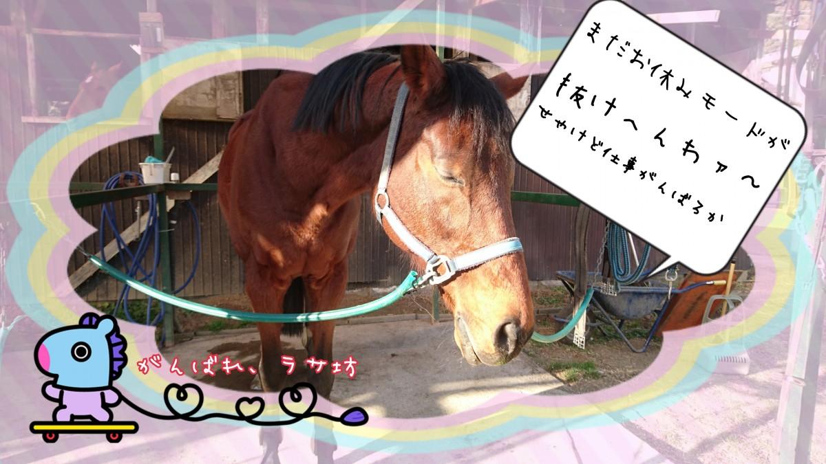 18-01-06-20-39-58-769_deco