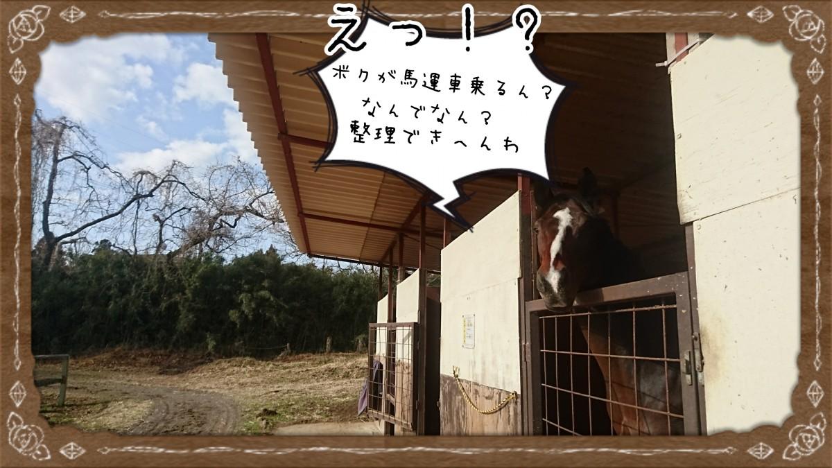 18-01-19-20-12-10-055_deco