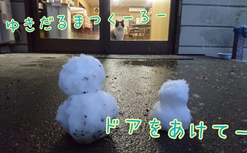 積雪☃️❄️