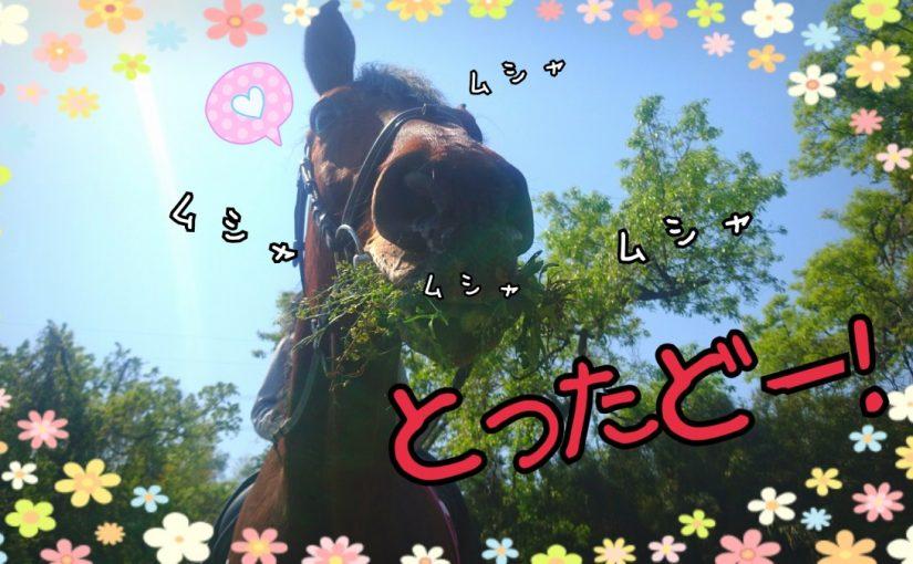 ヒリヒリ(>_<)