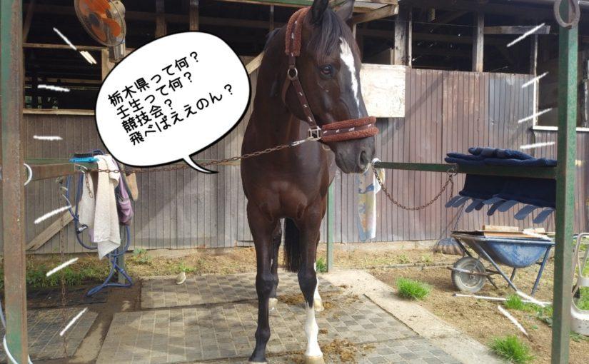 競技会デビュー!